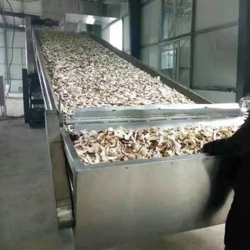 Moringa leaf tea rotary hot air dryer machine