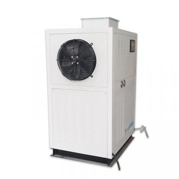 Continuous Fruit/Vegetable Snacks Hot Air Dryer Tunnel Drying Machine